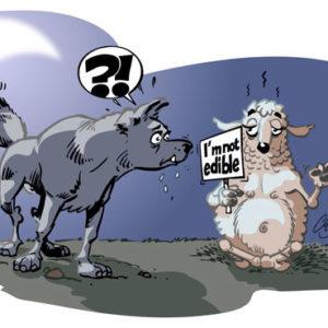 loup-mouton-vect