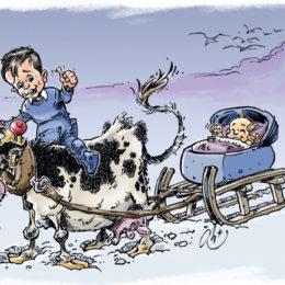 Faire-part de naissance vache