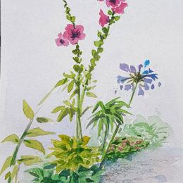 Carnet de voyage, Fleurs