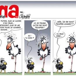 Emma strip 72